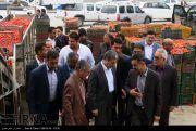 تصاویر/ سفر استاندار به شهرستان دیر