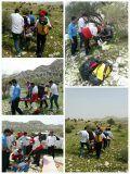 نجات دو کوهنورد آسیبدیده در کوههای شهرستان جم+عکس