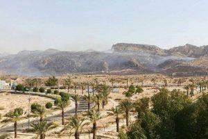 آتشسوزی در مراتع شهرستان جم/ حریق در حال گسترش است
