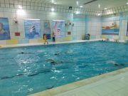 جشنواره شنا با حضور ٧۵ شناگر در شهرستان جم برگزار شد + تصاویر